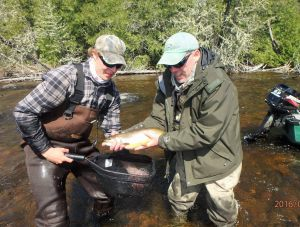 trophy-brook-trout-esnagami-june-2016