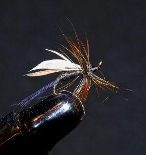 esnagami-fly-6