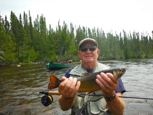 brook_trout_5