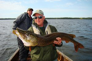 trophy-pike-48-inch