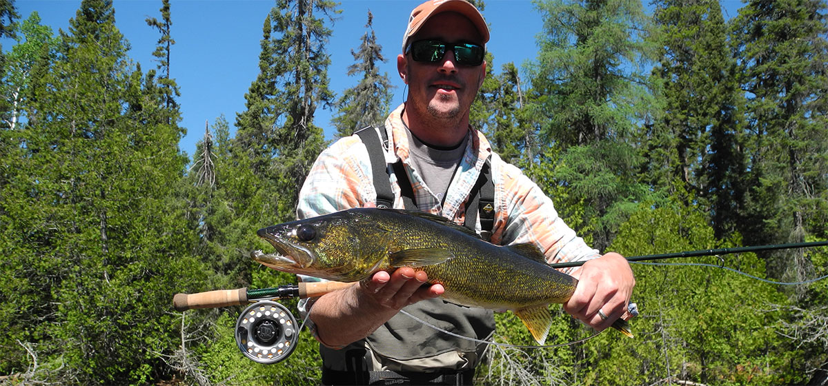 walleye-large