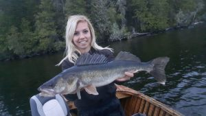 big-walleye