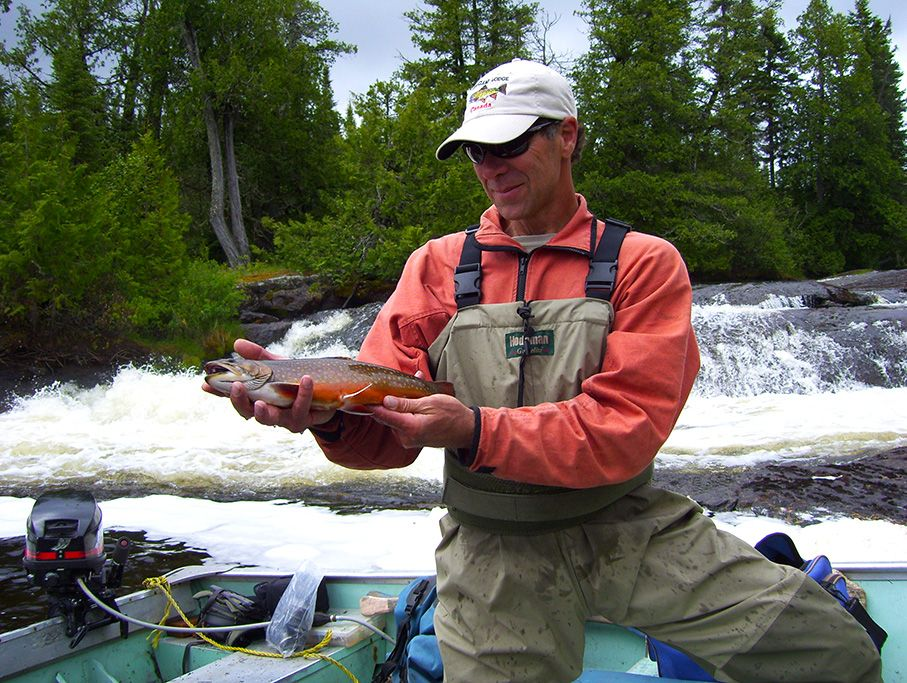 Rapids, Riffles, Spring Holes and Brook Trout